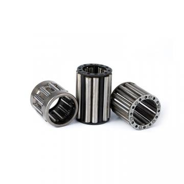 INA F-207555.6 Cylindrical roller bearing